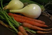 quecuinoavui_Cebes, pastanagues...a la cassola!